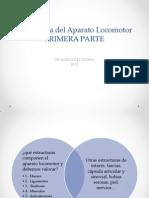Semiología del Aparato Locomotor final