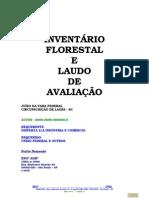 Modelo de InventÁrio Florestal & Laudo de AvaliaÇÃo Integrado