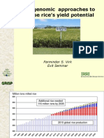 Using genomic approaches to increase rice's yield potential