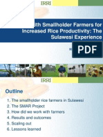 Working with smallholder farmers for increased rice productivity