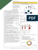 CB CS07 CellCommunication