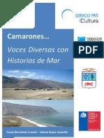 Historia Oral Caleta Camarones