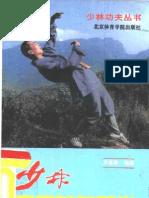 Shaolin Shiyong Fangshen Zuiquan.Li Jianxin