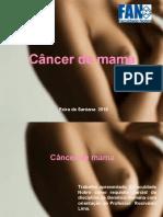 Genetica Do Cancer de Mama