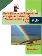 Guía Básica de Seguridad e Higiene Industrial Tercera parte (2)