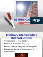 ESTRES CALUROSO