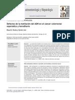 Metilacion Adn Cancer Colon