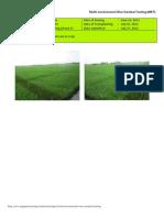 2012WS MET 2-Irrigated - Week 6 (July) Isabela