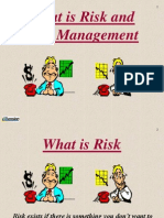 GOT RISK Presentation