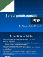 32310819 Soldul Posttraumatic