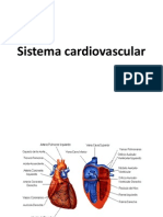 Sistema Cardiovascular 2012