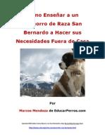 Como Enseñar a un Cachorro de Raza San Bernardo a Hacer sus Necesidades Fuera de Casa