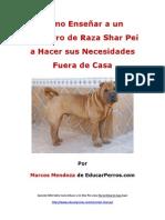 Como Enseñar a un Cachorro de Raza Shar Pei a Hacer sus Necesidades Fuera de Casa