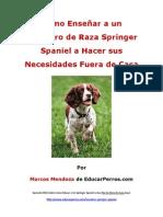 Como Enseñar a un Cachorro de Raza Springer Spaniel a Hacer sus Necesidades Fuera de Casa