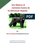 Cómo Mejorar el Comportamiento Canino de tu Schnauzer Gigante