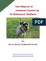 Cómo Mejorar el Comportamiento Canino de tu Schnauzer Mediano