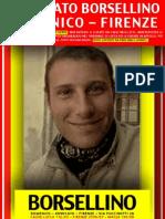 Avvocato BORSELLINO DOMENICO - FIRENZE - VIA PUCCINOTTI, 28