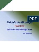 Módulo de Micología. Practico. Microbiol. S.L..ppt