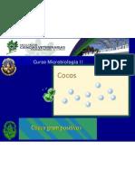 Streptococcus - Enterococcus 2012 Micro II (1)