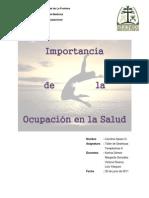 Carolina Opazo_ Ensayo Ocupacion y Salud