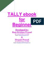 Tally eBook for Beginner
