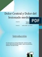 Dolor Central y Dolor Del Lesionado Medular