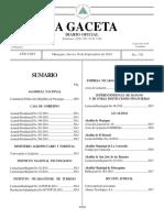 Gaceta No 176 Constitucion 2010