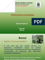 Fisiologia Do Bonsai