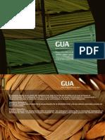 Presentacion Colectivo Gua_marzo 2012