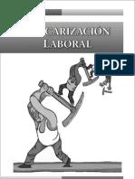 Precarizacion Laboral Universidad Tolima