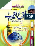 Shrookh Al Gayeeb Tarjma Fatuhul Gayeeb by - Fazelat-ul-Shaikh Abdul Qadr