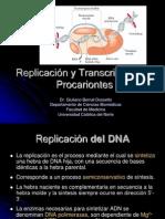 24_Replicación_y_transcripción_en_procariontes