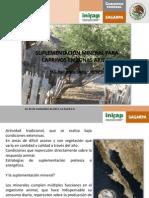 Suplementacion Mineral Para Caprinos en Zonas Aridas