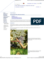 Botrytis Bunch Rot of Grape (Botrytis cinerea) - Pest Management – B.C. Ministry of Agriculture