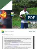 PCI_2010-11_REPORT