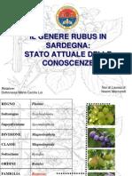 Il Genere Rubus in Sardegna2