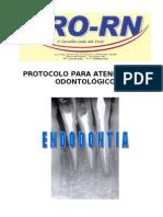 Protocolo Endo