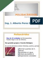 POLISACÁRIDOS 1