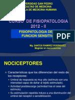 Fisiopatologia de La Funcion Sensitiva II