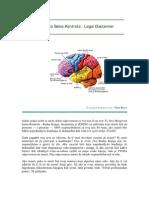 Nino Roso - Radna-Knjiga Mozgovne Samo-Kontrole & Računala