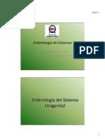 Embriología de Sistemas Urogenital y digestivo
