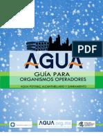GUIA Orgs Oper