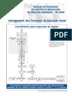 Fluxograma dos Processos de Execução Penal