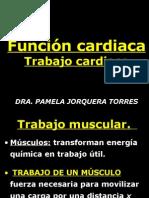 Funci_n_cardiaca_8_alumnso (1)