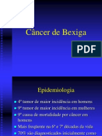 06.Cancer de Bexiga