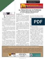ADOTEVA[1] artículo publicado