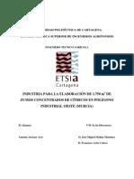 Projeto Industria de Processamento de Citricos