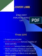 Lower Limb_Knee Joint,Poplitial Fossa & Leg