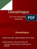 05. Oesophagus
