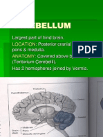physiology of Cerebellum lec foe 2nd year by dr sadia uploaded by zaigham